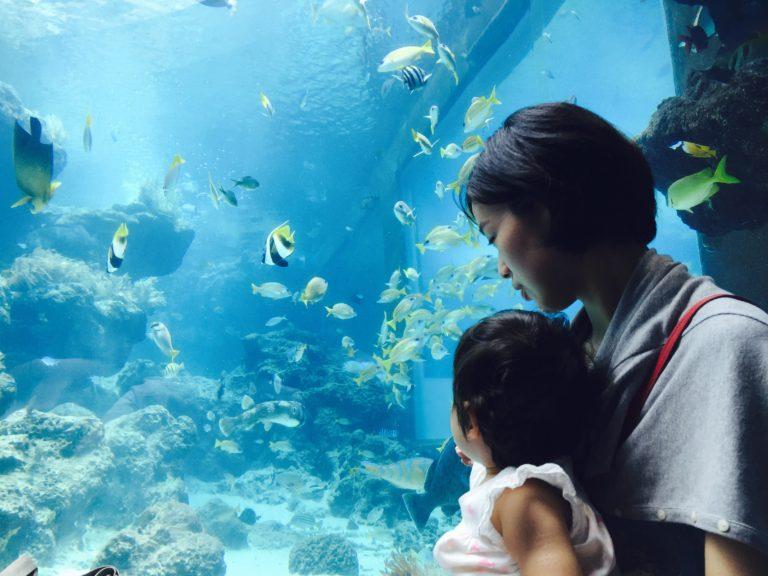 1歳児を連れて沖縄旅行に行く【番外編 大人も子供も楽しめるスポットとアクティビティ】