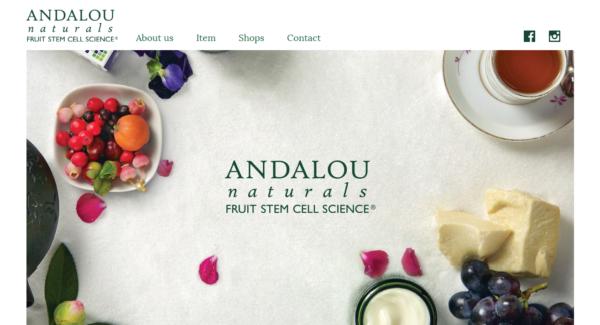 アンダルーホームページ