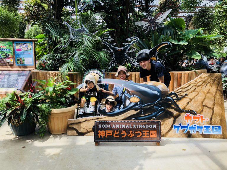 【子連れでお出かけ】神戸どうぶつ王国レビュー!(料金・ショー・ランチはどうする?)