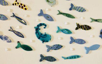 【子連れでお出かけ】京都水族館の魅力とは。行き方、食べ方、楽しみ方をレビュー!